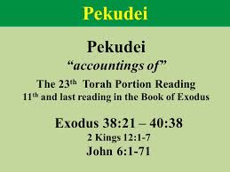 Image result for pekudei torah portion images
