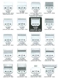 Andis Grooming Chart Repinned Andis Blades Hair Length Chart Doggrooming