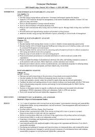 Download Sustainability Analyst Resume Sample as Image file