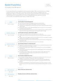 Vice President Resume Samples Vp Resume Samples Templates Visualcv