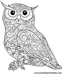 Small Picture Coloring Pages Of Owls For Adults Awesome Coloring Coloring Pages