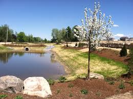 Pond Design Run Off Water Retention Vermont Landscaping Design Installation