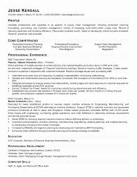 Demand Planner Resume Sample Elegant Examples Of A Metaphor
