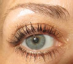 l oréal voluminous false fiber lashes mascara photos swatches review ommorphia beauty bar