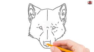 simple wolf drawing. Contemporary Drawing How To Draw A Wolf Head Step By Easy For Beginners U2013 Simple Wolves  Drawing Tutorial Intended O