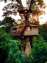 The 10 Coolest Tree House Hotels In The World  MomondoCoolest Tree Houses