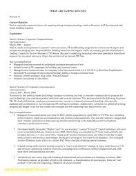 New Awesome Objective Statement For Resumes Objective Statements For