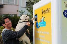 Dog Vending Machine Magnificent These Vending Machines For Stray Animals Should Be In Every City