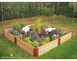 green raised garden beds using cedar wooden box with natural plants
