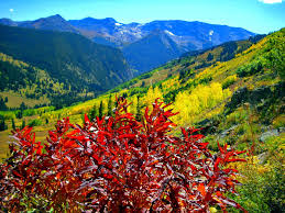 lit laptop wallpapers. mountain lit sun colorful grass slopes red clear sunny sky nice summer nature trees bright greenery laptop wallpapers e