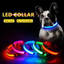 Led dog collar ...