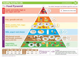 Achieving A Balanced Diet With The Food Pyramid Spunout Ie