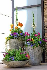 1675 Best Container Gardening Ideas Images On Pinterest Container Garden Ideas Pinterest