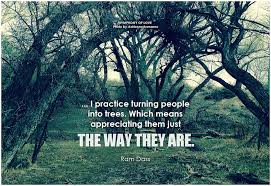 Ram Dass Quotes Classy Ram Dass I Practice Turning People Into Trees Which M Flickr