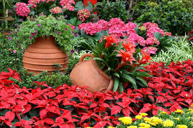 if your garden has mostly has red yellow and orange flowers it is