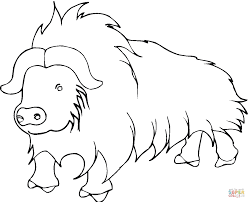 Small Picture Yak from Himalayan coloring page Free Printable Coloring Pages