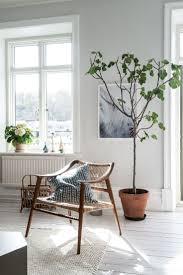 indoor plants, tiny tree, wooden arm chair, minimalist home, cozy living  room