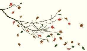 leaf wall art decor adorable cream branch falling autumn leaves sharp nature vinyl wall art decal leaf wall art