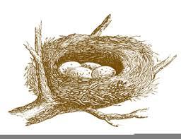 bird nest with eggs clipart. Beautiful Bird Clipart Bird Nest With Eggs Image On