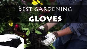 best garden gloves. Buyer\u0027s Guide: Best Gardening Gloves [Updated 2018] Garden