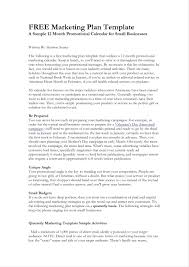 Advertising Plan Pdf Advertising Agency Business Plan Template Karaackerman