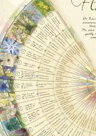 Bach Flower Remedies Chart Set Of Bach Flower Wall Chart Posters A1