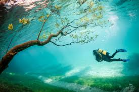 real underwater world. Perfect World But Once The Snowcapped Hochschwab Mountains Begin To Melt All Lovely  Park Tracks Bridges And Trees Submerge Into An Underwater World Intended Real Underwater World