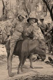 facts for students anzac centenary ftfs simpson and his donkey
