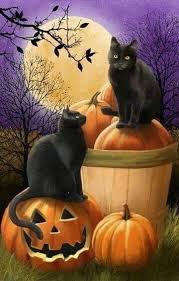 Pin by Priscilla Willis on Halloween | Halloween pictures, Halloween art,  Halloween cat