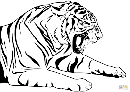 Small Picture Tiger coloring page Free Printable Coloring Pages