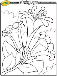 Easter Lilies Ii On Crayolacom Svg Files Easter Coloring Pages