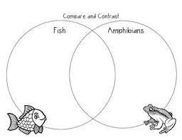 Difference Between Amphibians And Reptiles Venn Diagram Compare And Contrast Fish And Amphibians Venn Diagram
