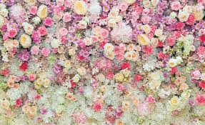 Beautiful Flowers Pastel Colours Wall ...