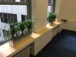 office planter boxes. Interior Plant Design And Indoor Care Bedford MA; Office Planter Boxes P