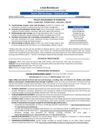 web developer resume sample doc cipanewsletter web developer cv web resume samples blue sky resumes sample document