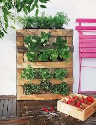 indoor vertical herb garden. Fine Vertical Herb Wall Pallet Garden Intended Indoor Vertical Herb Garden I