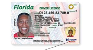 New Blogs Florida's Licenses Boost Should Driver's Security