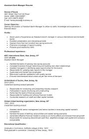 Sales and Operations Executive Resume VisualCV