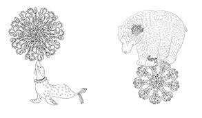 大人のぬりえ花と夢いっぱいのぬりえ 本2冊24色の色鉛筆セット発売