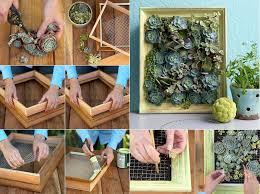 Small Picture DIY Mini Succulent Garden Home Design Garden Architecture