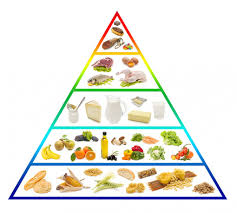 Znalezione obrazy dla zapytania piramida żywienia 2016