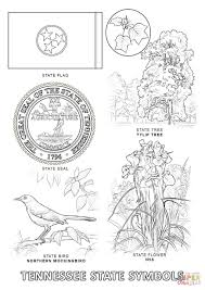 Small Picture Tennessee State Flag Coloring Page Tennessee State Symbols