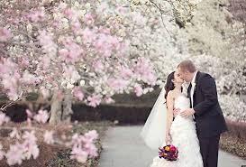 cherry blossom wedding ideas archives happyinvitation com