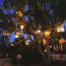 photo of chandelier tree los angeles ca united states the chandelier tree