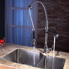 Danze Kitchen Faucets Reviews Pro Style Kitchen Faucet Best Kitchen Ideas 2017