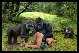 Girl fucked by a gorilla real video