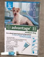 imidacloprid for dogs. Delighful Dogs Imidacloprid Advantage II In For Dogs I