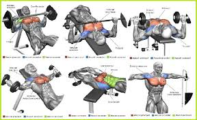 Chest Workout Chart Step By Step The 13 Best Chest Exercises For Men Daily Body Workout