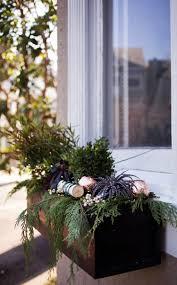 Blumenkasten Weihnachtlich Dekorieren Fenster Modern Birke