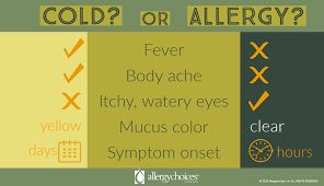 Cold Vs Allergy Symptoms Chart Allergic Rhinitis Hay Fever Allergychoices Inc